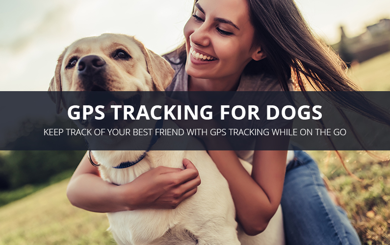 GPS Tracking For Dogs