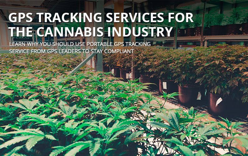 Cannabis Industry GPS Tracking Devices